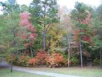 Fall Season at Creek Bend Escape