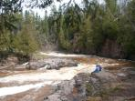 Gooseberry River's rapids