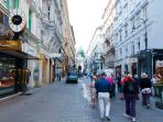 2 minutes walk: Kohlmarkt shopping street, Imperial Palace - Hofburg - staight ahead