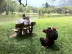 Taiping Lake Gardens is a favourite backdrop for bridal couples taking ourdoor photographs