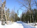 Driveway Entrance - Winter