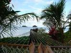 view from the hammock!