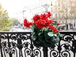 Private Balcony to Enjoy the Views !