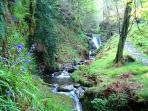 Nearby Glens are great for nature walks and relaxation