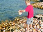 One of our guest checking out the conchs