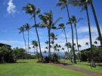 Napili Shores has Lush Tropical Grounds
