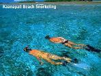 Snorkelling at Kaanapali Beach
