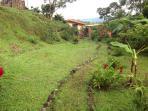 Our Rainforest Trail