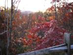Fall foliage at Chalet