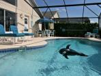 Beautiful inviting blue pool