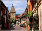 Bergheim and his tor