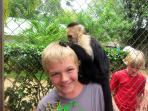 Play with the Monkeys on the Congo Trail