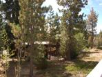 Your back yard is a forest of Jeffrey Pines sloping down to Lake Tahoe