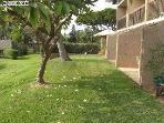 Maui Vista Building #3- lawn by pool