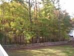 Wooded area on property