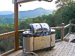 Outdoor Propane Grilling Station