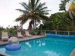 Pool overlooks garden and has ocean views