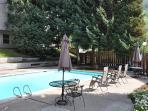 Snowfox pool
