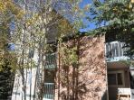 Timber Falls Building 6