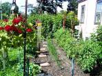 Garden Produce Shared