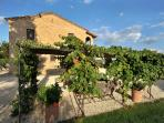 Large Villa in Tuscany for a Group - Casale del Borgo