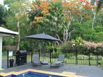 Private tropical rear garden