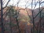 Views off your deck of the Cherokee National Forest.
