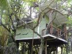 View of side of Tree House and balcony