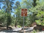 Forest Road--1/2 mile from Lassen Lodge. Mountain Biking, hiking, jeep,motorcycle, etc