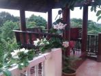 Top floor terrace with vine and sala