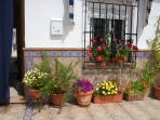 Flowers to front of House