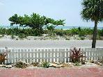 Beach View Beach Tree Patio View