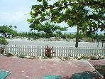 Beach Tree Suite Patio View2