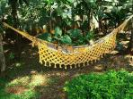 Relax in our outdoor hammock!