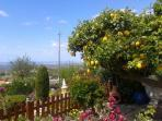 Views from our Lemon Cottage beyond