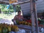 Fresh tropical fruit stands