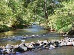 Branch of Oak Creek