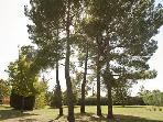 5 acres park