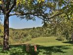 6 acres with fabulous views and great spots for bird and wildlife watching, sunsets and star gazing!