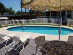 Pool 18 x 36 (3 to 5 feet deep)