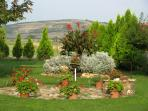Garden with party - place (for Hungarian goulash)