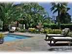 Relaxing pool deck and garden