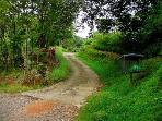 entrance driveway to Casa Manana
