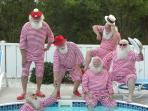 Santa and His Helpers Relax by Our Private Heated Pool.