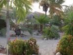 Mature tropical gardens surrounding villa
