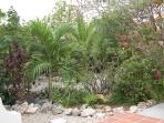More gardens, the villa is tucked away among beautiful foliage. Adds tremendous privacy.