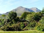 Glamaig from the garden