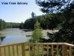 view from balcony in Spring time. View from balcony is all pond & forested land