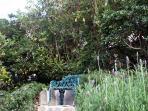 Sitting area in quiet garden.