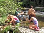 Panning for gold in the rivers